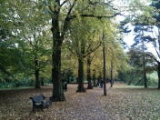 An autumnal University Park