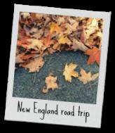New England road trip