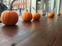 Pumpkins in Peets